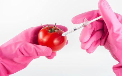 GMO - za i przeciw